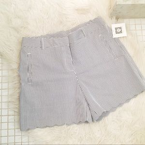 NWT Anne Klein Pinstriped Scalloped Shorts